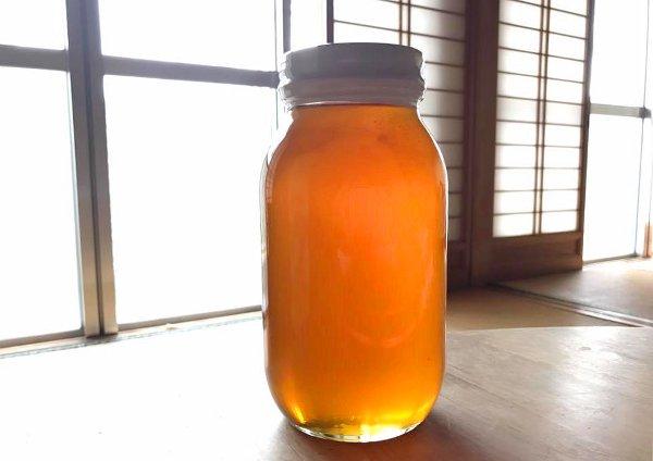 日本みつばちのハチミツ1