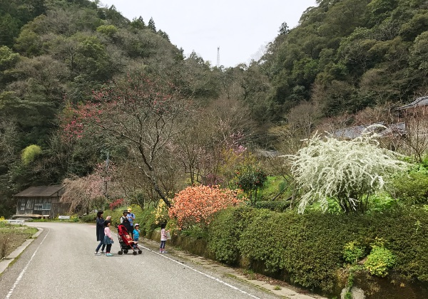 satoyama3